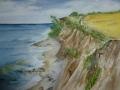 Steilküste im Mai
